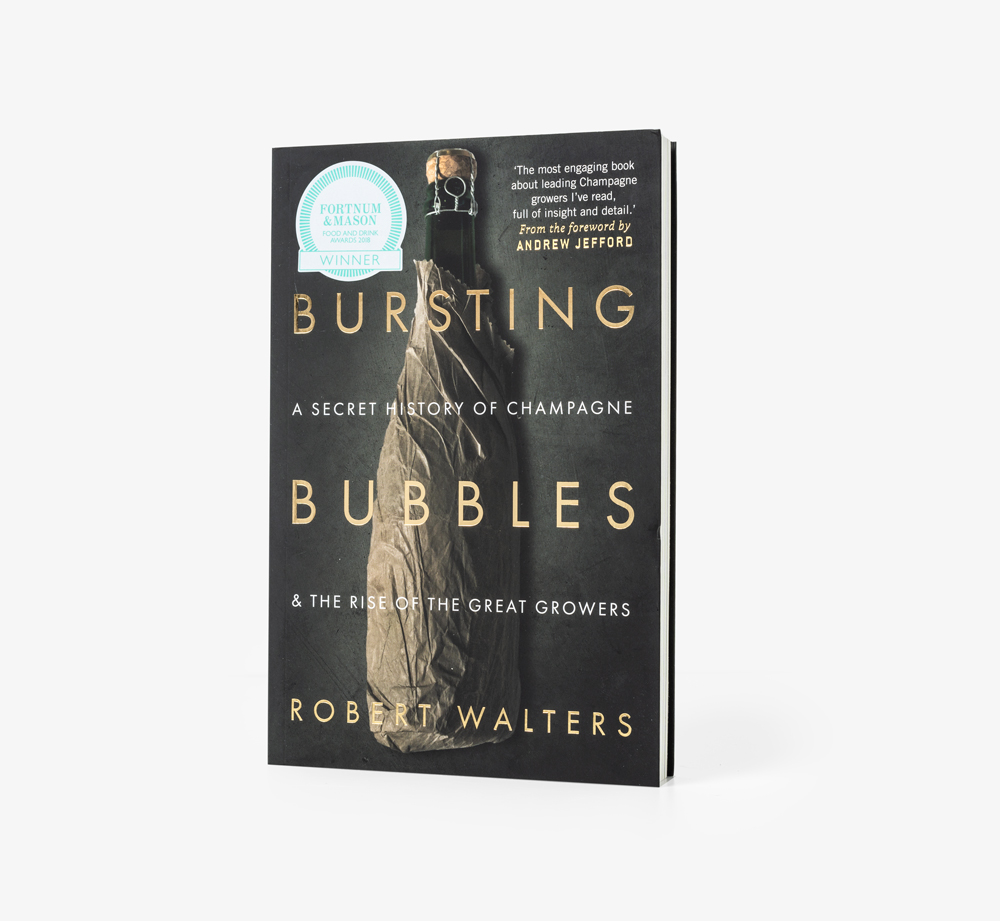 Bursting Bubbles by Robert Walters - Bookblock Shop Books