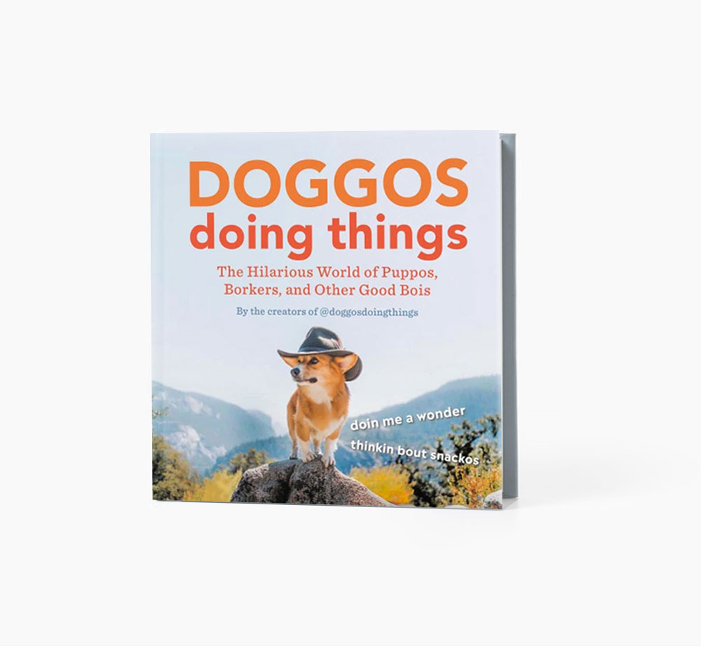 Doggos Doing Things by @doggosdoingthingsBooks| Bookblock